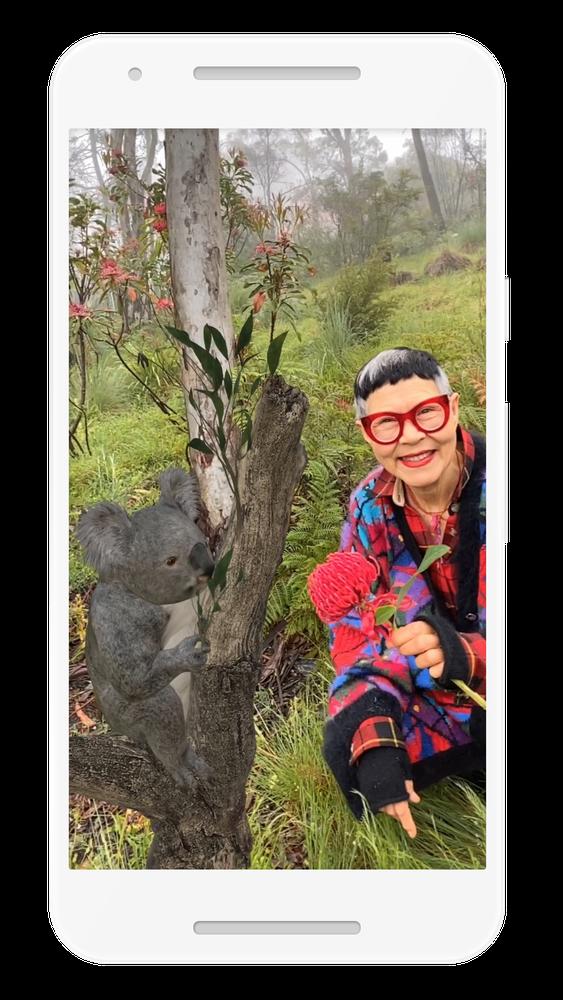 Woman looking at a koala in AR